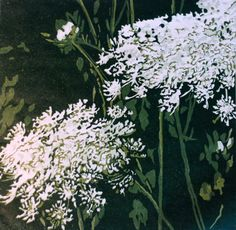 Queen Anne's Lace original linocut by lisahope on Etsy, $85.00