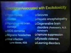 Dr Russell Blaylock MSG, Aspartame, Flavor Enhancers Talk, Lecture, Documentary Health Food) - YouTube