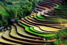 Sapa in Northern Vietnam is a little travelled area with some of the most spectacular scenery I have seen.  Combine it with visits to hill-tribe villages and great rural markets, and you have a great destination!  http://www.adventurecenter.com/tripcode?tripcode=tvsx