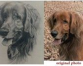 Pencil in Drawing & Illustration - Etsy Art realistic pencil drawing of your pet maybe i should do this for my pet Realistic Pencil Drawings, Pencil Drawing Tutorials, Art Drawings, Wooden Pencils, Best Pencil, Color Pencil Art, Line Drawing, Colored Pencils, Your Pet