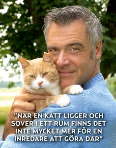 """""""When a cat is found sleeping in a room there isn't much more an interior designer can add. Crazy Cat Lady, Crazy Cats, More Than Words, Kirchen, Just Love, Sweden, Funny Cats, Laughter, Dog Cat"""