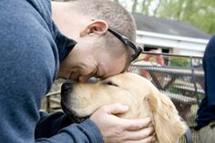 Canine Connection Therapy | by warriorcanineconnection