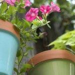 DIY – kleurrijke bloembak maken?