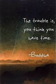 "Don't take anything for granted. Time is precious. ""The trouble is, you think you have time."" Buddha"