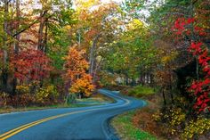 Winding Road in Floyds Knobs, IN