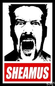 Sheamus! FEEEEELLLLLLLAAAAAAAAAAAAA!
