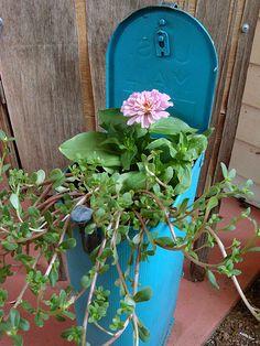 outdoor_room_mailbox