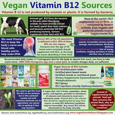 Vegan B12 Sources