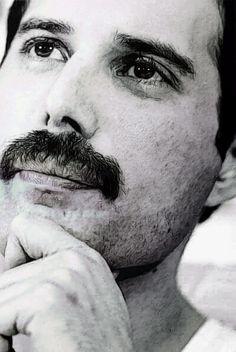 Freddie M.