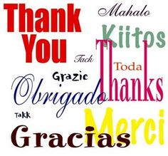Thank You... To All My Pinterest Sisters... & (Brothers) Out There~! You Make Pinterest a Beautiful Place~!  ઇઉ