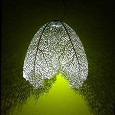 arboreal lamp