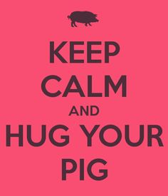 KEEP CALM AND HUG YOUR PIG