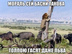 uh.ru | картинки