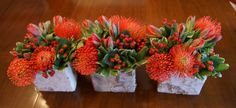 Pincushion proteas, Rococco tulips and red hypericum with variegated pittisporum in birch cubes are a modern update of holiday flowers by Fleur de Vie.