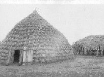 Wichita grass hut and  grass roof summer arbor. Western History Collections, University of Oklahoma Libraries, Irwin Brothers Studio Collection, Native American Photos