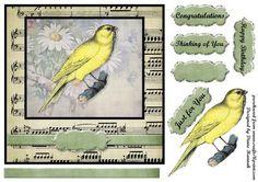 Romantic Bird Canary on Craftsuprint - View Now!
