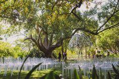 Elegant Garden Wedding in Stellenbosch. Book Your Winelands Wedding Venue Today. Elegant, Garden Wedding, Real Weddings, Wedding Venues, Wedding Inspiration, Canvas, Top, Outdoor, Classy