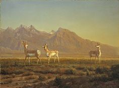 The National Museum of Wildlife Art is a temple to nature built into the side of a cliff in rural Wyoming. Albert Bierstadt, Wildlife Art, National Museum, Historical Photos, Yorkie, Free Images, Moose Art, Horses, Jackson Wyoming