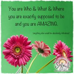 Soleil Wellness Quotes