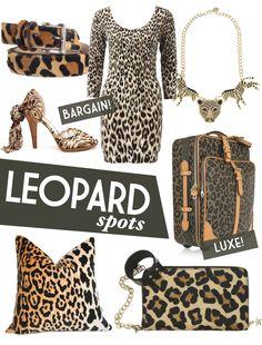 LOVE the Animal Print.  Adore Home magazine - Blog