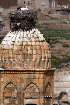 Minaret meczetu El Rizk z gnieżdżącymi się na nim dwoma bocianami, Turkey