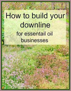 How to build your essential oil business downline.