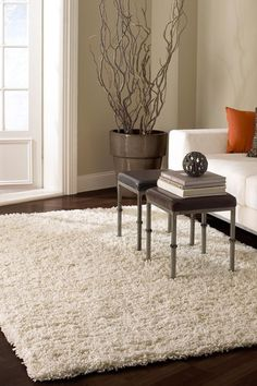Shaggy Rug by Love My Rugs (Family Room)...need something to complete our living room. Maybe something like this rug?
