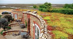 ZinCo provide various proven systems for sedum roofs. Our green roofing system Sedum Carpet is a lightweight green roof type with ground-covering plants that can easily deal with sun, wind and drought. Extensive Green Roof, Green Roof Benefits, Sedum Roof, Roof Plan, Garden Bridge, Natural, Country Roads, Outdoor Structures, Urban