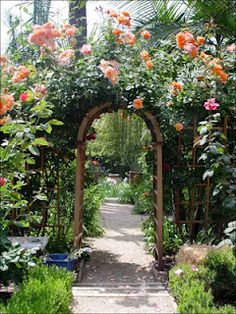 Arbors are synonomous with roses... A simple arbor can create a welcoming entryway when placed over a walkway.