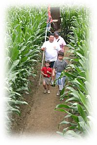 Corn Mazes | Fun Things To Do In PA | Cherry Crest Adventure Farm - Lancaster County - Join their VIP Club for a $10 Gift Certificate for FREE Roasted Sweet Corn: http://www.cherrycrestfarm.com/vipclub.asp