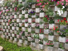 "12 ideas para tu huerto vertical ""Use Cinder Blocks To Plant Flowers Inside You can create a whole garden wall using cinder blocks. Arrange them in some cr Growing Flowers, Planting Flowers, Flowers Garden, Herbs Garden, Gardening Vegetables, Garden Beds, Garden Art, Diy Garden, Cinder Block Garden"