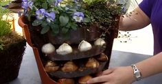 Here's why you'll want to bury bulbs in your flower pot