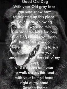 i know , I'm sorry, it made me cry but it's so true Dogs