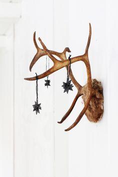 decoration de noel avec des bois de cerf - mur intérieur - nature