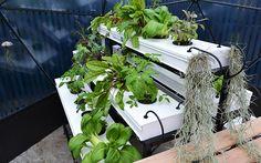 love-your-garden-salad-planting-raised-bed-shelves