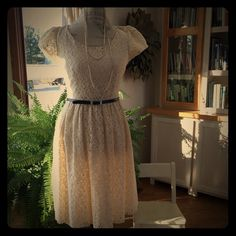 NWOT cream lace skater dress super cute cream lace skater dress with tiny black belt  never worn Maurices Dresses