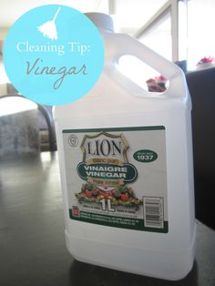 cleaning tip: vinega