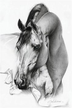 Equine Fine Art: Pencil, Charcoal & Pastel Horse Drawings (Dunway Enterprises)  Realistic Pencil Drawing