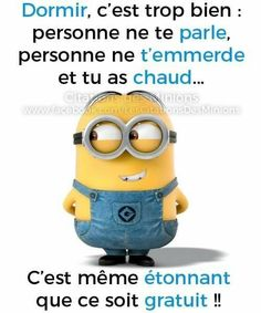 Minions, Garance, Funny, Fictional Characters, Quotes, Humor, Laughing, Husky Jokes, Crotch Shots