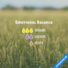 Emotional Balance - Essential Oil Diffuser Blend