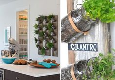 kitchen inspiration for herbs