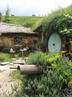 Hobbiton, Matamata, New Zealand — by Carolyn Roberts. Huge fan of Lord of Rings .. This place did not disappoint .. Loved it