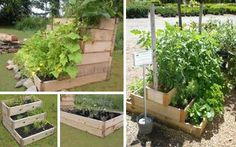 Urban Gardening leaving a tiny footprint. IF you lack the space but want the garden, why not try a stair planter box....