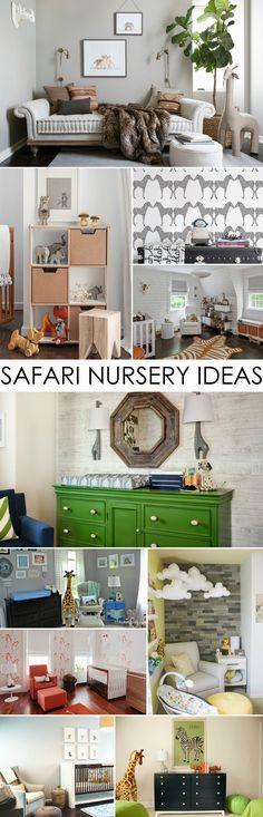Project Nursery's Favorite Safari Nursery Ideas - from super-mod to classic and sweet!