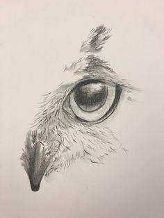 Drawing Owls, Face Pencil Drawing, Drawing Sketches, Pencil Drawings, Pencil Sketches Of Animals, Animal Drawings, Bird Sketch, Face Sketch, Tattoo Drawings