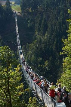 An aerial view over Germany's longest suspension bridge. A 1,200ft-long foot bridge offering dizzying views across the Geierlay canyon -  Mörsdorf, Rhineland-Palatinate