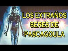 ¿Se esconden extraños seres en el fondo del lago Pascagoula? - http://www.misterioyconspiracion.com/se-esconden-extranos-seres-en-el-fondo-del-lago-pascagoula/