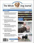 The Calming Herb Chamomile | Whole Dog Journal