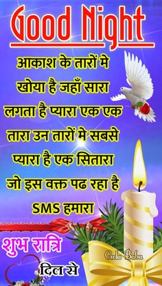Hindi Good Morning Quotes, Good Morning Images, Good Night Massage, Good Night Blessings, Night Wishes, Good Night Image, Daddy, Board, Flowers