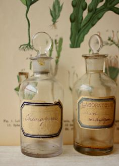 botany prints, glass bottles